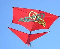 An attractive home-made Roller kite.