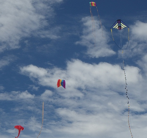 Kites aloft at Flaherty's Beach near Warooka, South Australia.