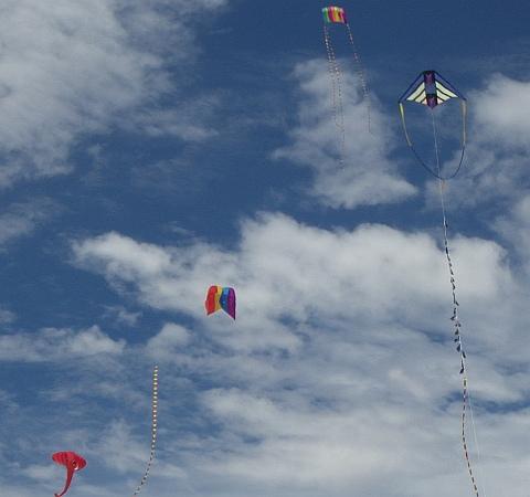 Kites aloft at Flaherty's Beach near Warooka, South Australia.