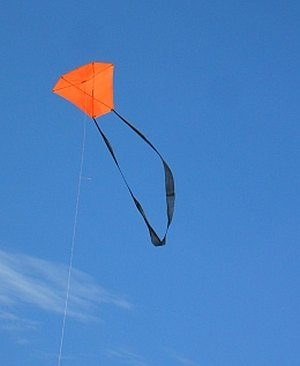 The 2-Skewer Barn Door kite high up in windy conditions