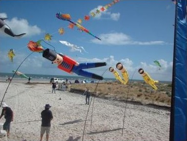 Windsocks at thea kite festival.