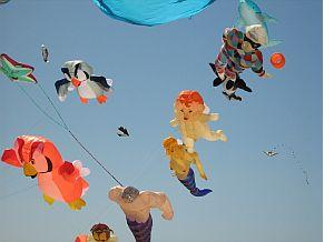 Adelaide Kite Festival 2008 - Owl kites and other inflatables with line laundry.