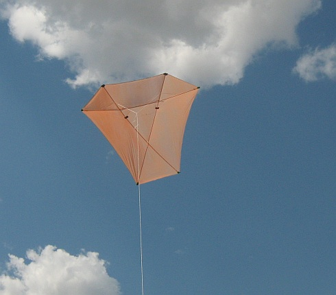 The original Dowel Barn Door kite in flight