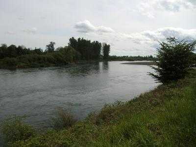 The view from Willamette park in Corvallis, OR