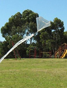 Barndoor Kites - early 1-Skewer barndoor