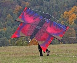Massive Home-Made Butterfly Kite