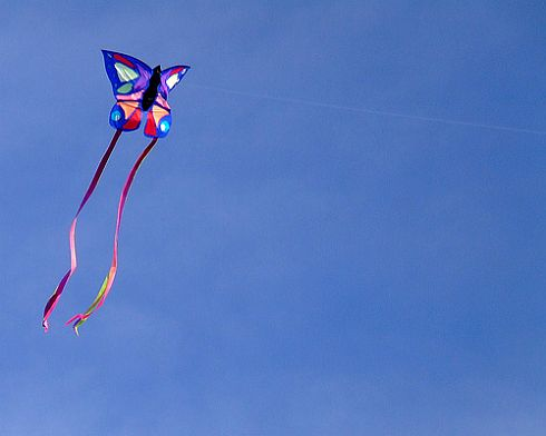 Butterfly Kite - high-quality retail kite with twin streamer tails.