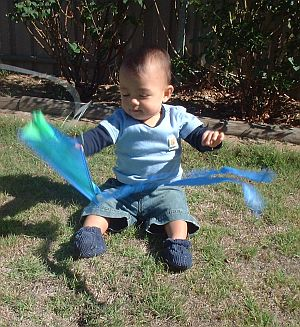 Child Flying Kite - Toddler Aren with the Baby Sled.