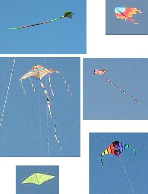 Delta kites in 2008 - a gallery of large colorful Deltas