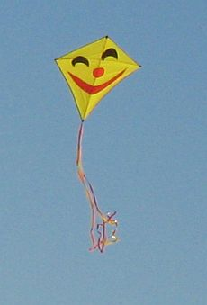 Diamond shaped kites need not be boring, as illustrated by this happy-face yellow festival kite.