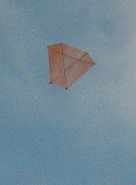 Dowel Barn Door kite - high up.