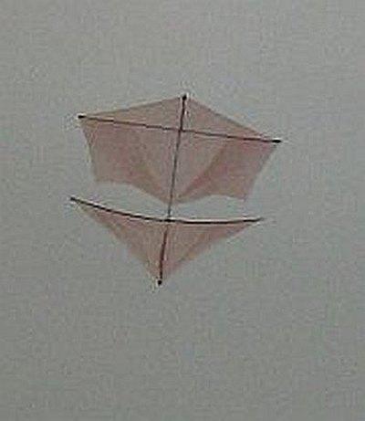 Dowel Roller kite on an overcast day.