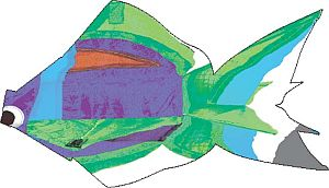 Kids kites sometimes have a fish outline and appearance for a bit of novelty