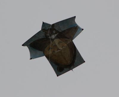 Kite up in the air (at 200 feet on a cloudy day)