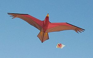 History Of Kites - Bird and Delta