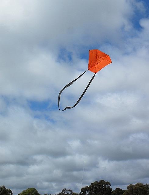 The 2-Skewer Barn Door kite in flight.