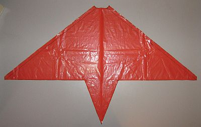 The 2-Skewer Delta - sail cut out and edged with sticky tape.edges 2