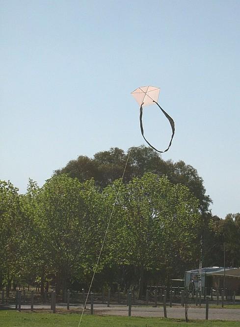 The MBK 1-Skewer Barn Door kite in flight.