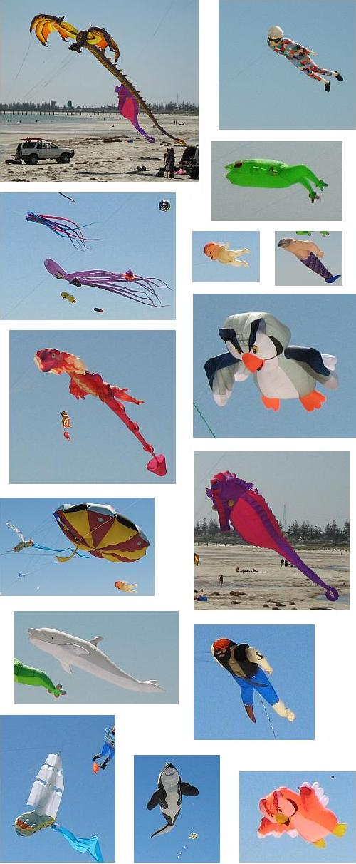 A collage of the most notable inflatable kites.