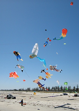 Some of the inflatable kites in 2008.