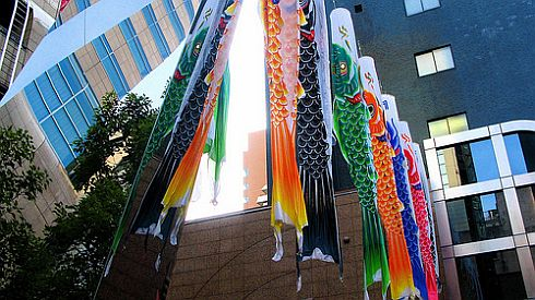 Some colorful and very glossy examples of Carp kites, as they are sometimes known.
