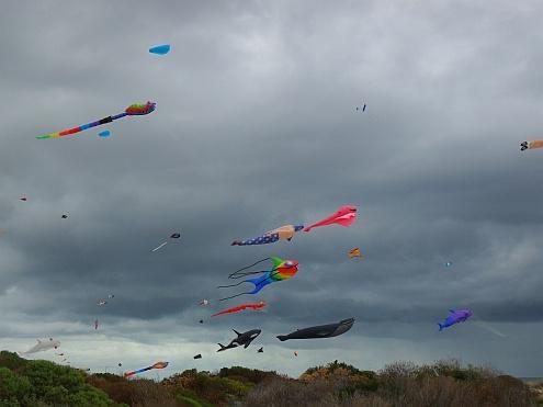 Adelaide Kite Festival 2013 - some of the