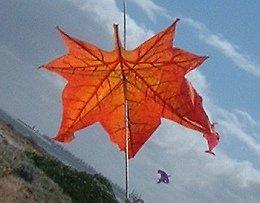 A Taiwanese leaf kite