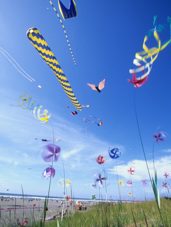 Kites, line laundry and ground-based wind art at a festival