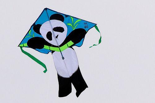 Slightly assymetric Panda kite.