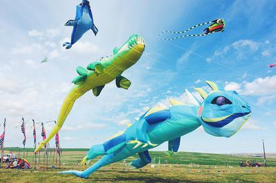 Large inflatables will be on display, weather permitting