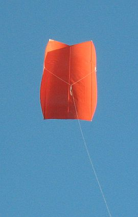 Simple Sled kite - posing for a photo, on a short line.