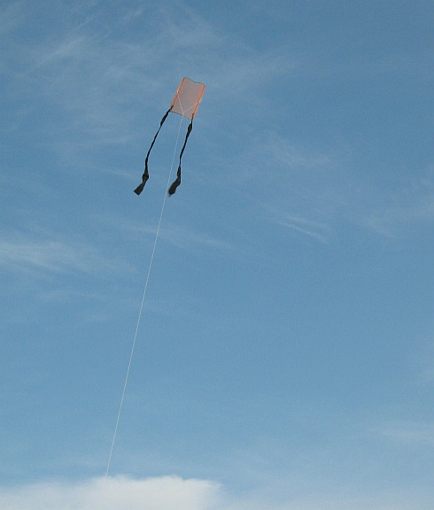 The 1-Skewer Sled kite in flight
