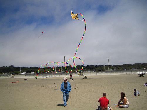 Spectra Line - Dual-line Delta Stunt Kite