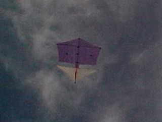 Roller Kite In Flight