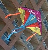Our old Windjam Delta kite.